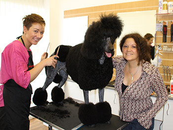 Alisa with Poodle Flamenko