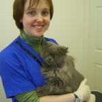 Cat Grooming School Student - Louisa McCarthy