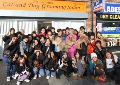 Japanese students visit Pet Universe Cat and Dog Grooming Salon